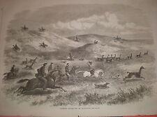 Hunting Guanacoes in patagonia Argentina 1869 print