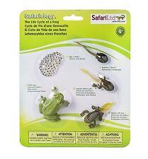 S269129 Safari Wissenschaft - Lebenszyklus eines Frosches (Set)
