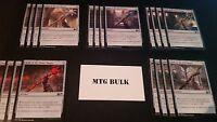 20 Card Staff Lot - Magic 2015 M15 - NM/SP - 4x of each - Sets - Magic MTG FTG