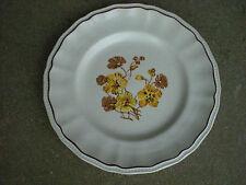 "KENSINGTON Staffordshire Ironstone 10"" DINNER PLATE  w Flowers England"