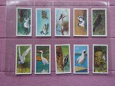 More details for complete set  - brooke bond tea - british birds 1954