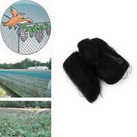 Black Bird-Preventing Anti Bird Netting Net Mesh For Fruit Crop Plant Tree 3x10m