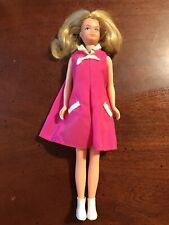 Vintage 1974 Skipper Doll