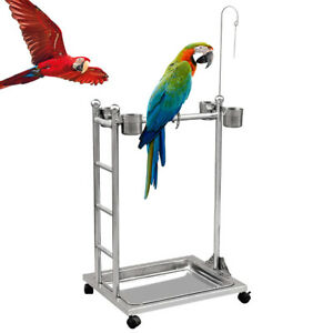 Stainless Steel Parrot Stand Bird Parrot Playstand Play GYM Training Perch Stand