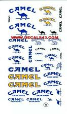 decalque  camel  1/24 valable 1/18