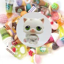 Authentic Littlest Pet Shop White Persian Cat # 15 + �*Suprise Food Items*�