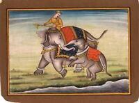 Hand Painted Mughal Miniature Painting Animal Elephant Love Finest Art On Paper