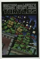 Teenage Mutant Ninja Turtles Color Special # 1 (2009 Mirage) Error Variant NM+