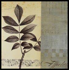 Chicago Botanic Garden Walnut Leaf Collage Poster Bild Kunstdruck im Alu Rahmen