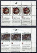 19241) UNITED NATIONS (New York) 1991 MNH** Human Rights 6v
