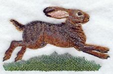 Embroidered Sweatshirt - Belgian Hare M1731