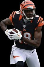 {24 inches X 36 inches} AJ Green Poster #1 - Free Shipping!