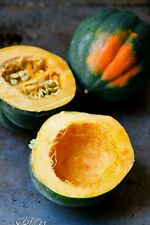 Acorn Squash-40 Seeds - Table King -Non GMO- Organic -Open Pollinated.