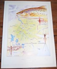 Fly Fishing Artwork - SIGNED Trevor Hawkins Print - Lowland Rivers, Tasmania
