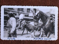 "Manteca CA/Street Parade-Horses & Cows/1947 ""On the Road"" Car Window Snapshot"