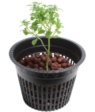 Viagrow 3 in. Net Pot Nursery Pot Plastic w/ Raised Rim and Drainage Holes 50-Pk