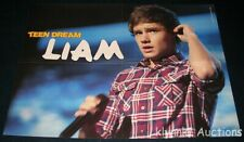 One Direction Liam Payne 3 POSTERS Centerfold Lot3486A Harry Styles 1D on back