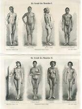 1895 NUDE MALE FEMALE BODY FORMS Antique Engraving Print