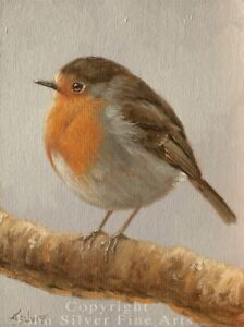 ROBIN ORIGINAL OIL PAINTING by Award Winning UK Master Artist JOHN SILVER. BA