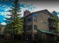 Vail Colorado rental President's week 2021 February 13-20th Aspen at Streamside