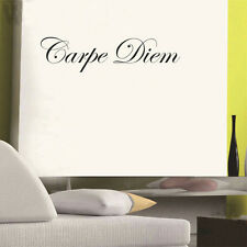 Carpe Diem seize the Day wall decal words sticker Art Home Decor Lettering