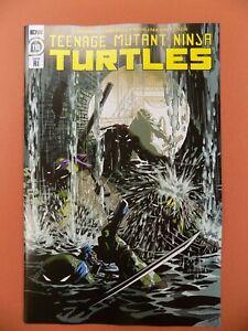 Teenage Mutant Ninja Turtles #110 RI 1:10 Variant