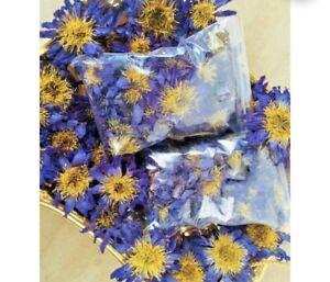 Dried Blue Lotus 100g Organic Flowers Drink - Nymphaea Caerulea