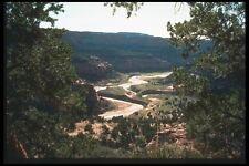 089059 Canyon vista a través de los árboles A4 Foto Impresión