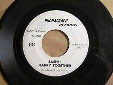 CHICAGO PSYCH FUZZ 45: JASHEL Happy Together/PADDY MANNA Rock-A-Bye PHONAGRAPH
