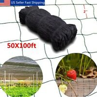 100'X50' Anti Bird Baseball Poultry Soccer Game Fish Netting 2'' Mesh Holes US