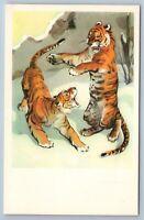 1969 TIGERS play Wild Animal  in ZOO Ill. Soviet USSR Postcard