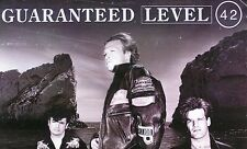 LEVEL 42 1991 GUARANTEED PROMO POSTER