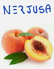 Delicious.. ORGANIC Peach Fruit Tree Seeds.. ORGANIC SEEDS PEACH