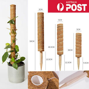 Coir Moss Totem Pole Extension Plants Support Creeper Potted Climb Support Stick