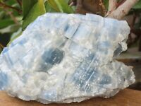 Raw Smooth Natural Blue Calcite Crystal Chunk - Omni New Age