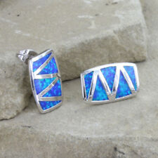 Montana Silversmiths River of Lights Walking Life's Path Earrings ER3806