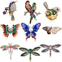 Fashion Animal Butterfly Gragonfly Bird Crystal Collar Brooch Pin Women Jewelry