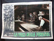 FOTOBUSTA CINEMA -  LA VOCE DELLA FORESTA - PAUL MAY - 1959 - DRAMMATICO - 01