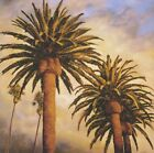 """35W""""x35H"""" FOG OVER CANARY PALMS by RICK GARCIA - TROPICAL CLIMATE TREES CANVAS"""