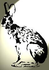 Shabby Chic in plastica Stencil lato Lepre Coniglio RUSTICO a4 297x210mm Muro DES C
