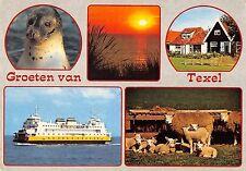 BR86420 groeten van texel seal ship bateaux netherlands
