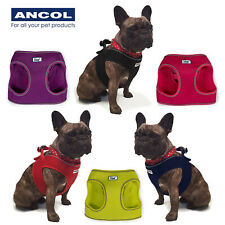 More details for ancol step in soft mesh dog puppy harness reflective easy to fit breathable