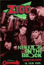 NEW KIDS ON THE BLOCK Concert 1989 Meadowlands Backstage Pass
