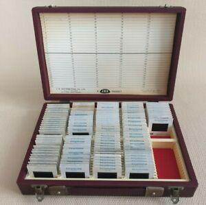 Vintage 35mm Slide Storage Box 150 Index Card Wembley Washington Holland USA