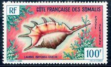 TIMBRE DE COTE DES SOMALIS PA N° 32 **  COQUILLAGE DE LA MER ROUGE COTE 12 €