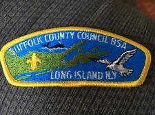 MINT CSP Suffolk County Council S-1c