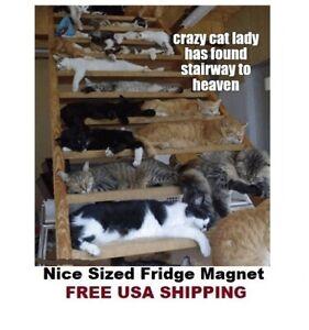 691 - Cute Crazy Cat Lady Heaven Fridge Refrigerator Magnet