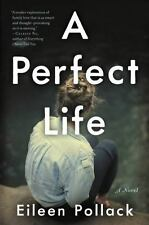 A Perfect Life by Eileen Pollack (2017, Paperback)