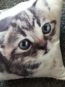 Small Cat Photographic Cushion