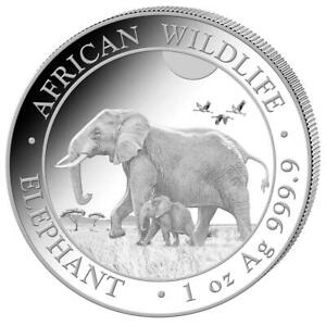 Somalia 100 SH. 2022 - Elefant - African Wildlife - Anlagemünze - 1 Oz Silber ST